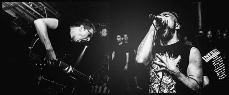 ancst-live